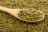 foto of mung beans  - Mung beans with wooden spoon on mung beans background - JPG