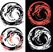 picture of dragon  - Vector illustration of four options of Chinese Dragon - JPG