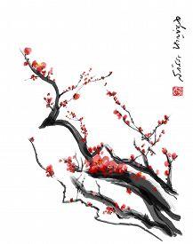 picture of black-cherry  - Sakura cherry blossom plum Chinese brush painting - JPG