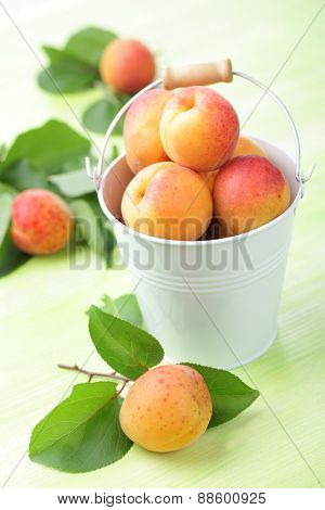 Fruits of apricot in the small bucket