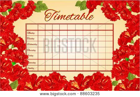 Timetable Weekly Schedule With Red Hibiscus Vector