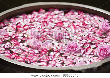Roses and rose petals in a bowl filled with water