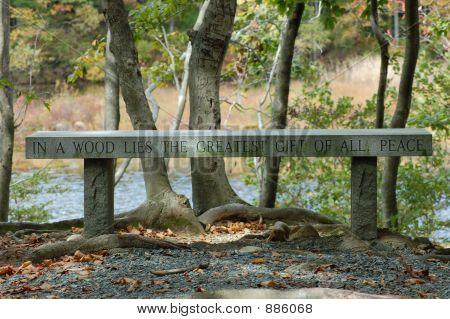 Peace Bench On Lake
