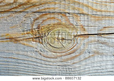 Wood plank texture with knot