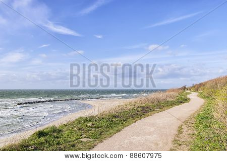 Coast Of Baltic Sea