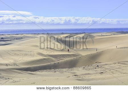 Dunes Of Maspalomas In Gran Canaria, Canary Islands, Spain