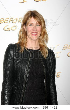 LOS ANGELES - FEB 20:  Laura Dern at the