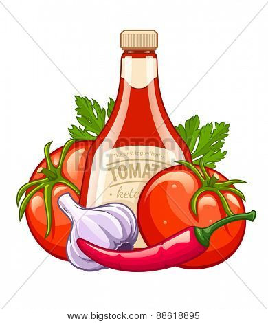 Bottle with ketchup and organic ingredients vegetables. Eps10 vector illustration. Isolated on white background