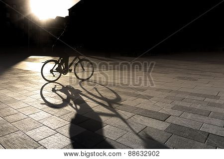 Back Lit Cyclist