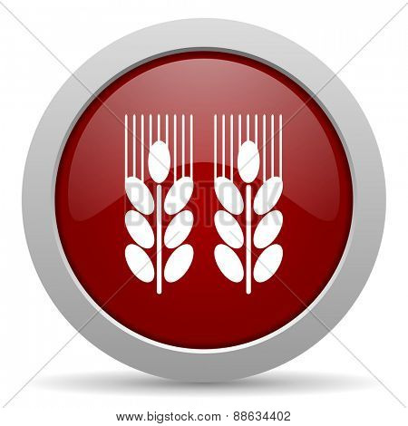 agricultural red glossy web icon