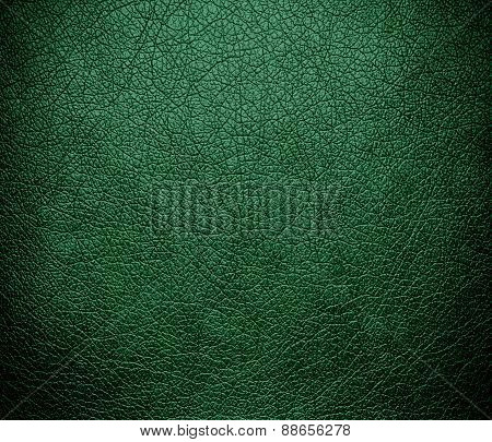 Amazon leather texture background