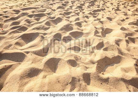 Sunny Sand