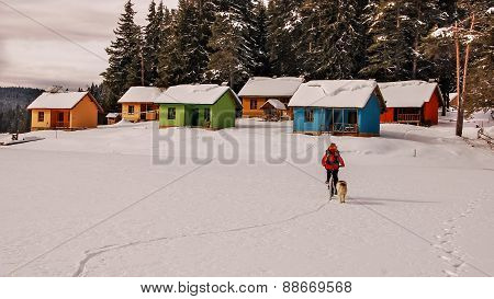 Colorful Houses On A Coast Of A Frozen Lake. Mountain Biker And Dog Riding On The Lake.