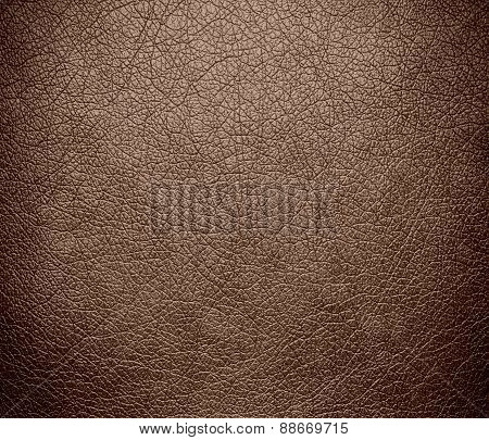 Beaver color leather texture background