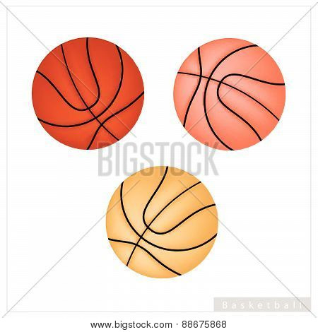 Set Of Basketball Ball On White Background