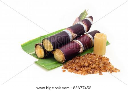 Sugar Cane Isolated On White Background
