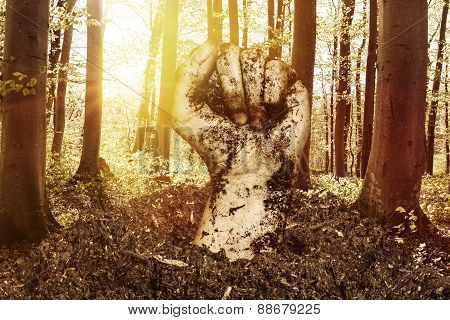 Dirty Fist Raising Up Over The Soil In Front Of Sunset Forest