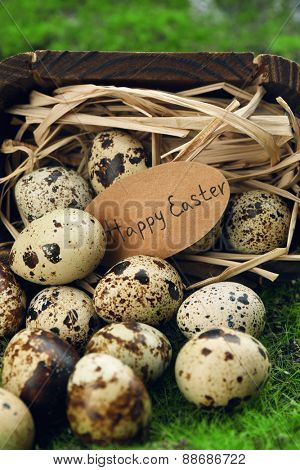 Bird eggs in wooden bucket on green grass background