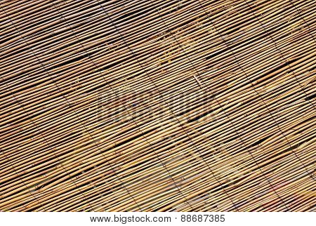 Abstract Background Of Large Bamboo Canes Entwined With Each Other