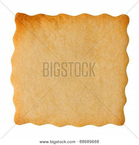 Closeup of blank biscuit