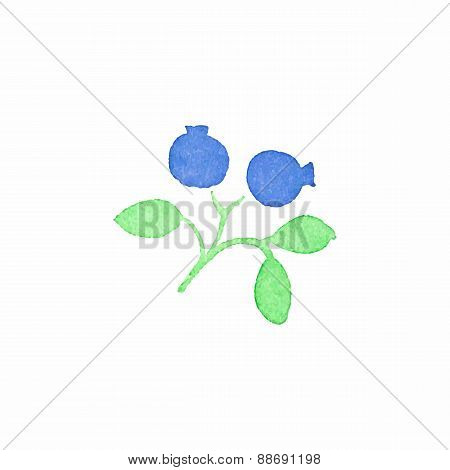 Watercolor blueberry on the white background, aquarelle. Vector illustration.