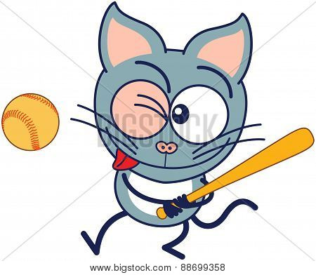Little gray cat preparing to hit the ball with a bat when playing baseball