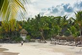 picture of mauritius  - Tropical Paradise in Dominican Republic or Seychelles or Caribbean - JPG