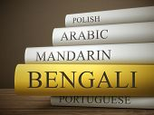 image of bengali  - book title of bengali isolated on a wooden table over dark background - JPG