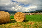 image of hay bale  - hay bales on green grass under a cloudy blue sky - JPG