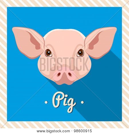 Vector portrait of a  pink pig. Symmetrical portraits of animals. Vector Illustration.