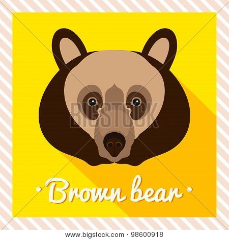 Vector portrait of a  brown bear. Symmetrical portraits of animals. Vector Illustration.