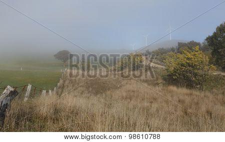 Foggy Winter Rural Landscape And Carcoar Blayney Wind Farm