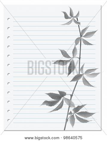 Exercise Book With Black-white Virginia Creeper Twig