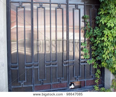 Locked Gates With Ornaments Of Metal Strips