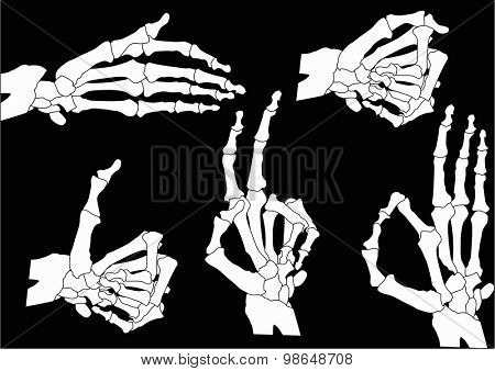 illustration with human hands skeleton isolated on black background