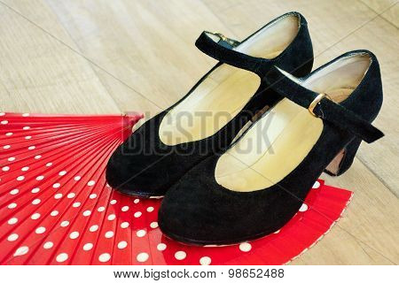Flamenco shoes on fan