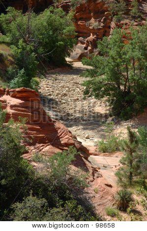 Desert Streambed