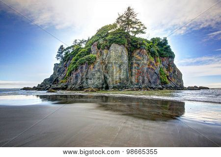 Sea Stack at Ruby Beach in Washington State