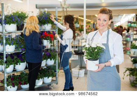 Portrait of happy florist holding flower pot with colleague assisting customer in background at shop
