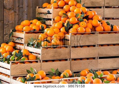 Wooden Crates Of Fresh Ripe Oranges