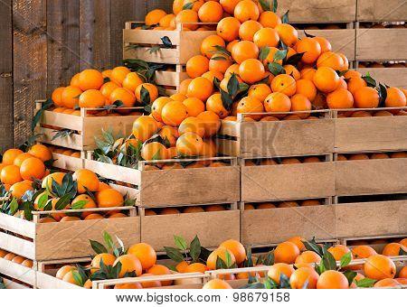 Wooden Crates Of Fresh Ripe Oranges