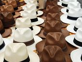 stock photo of panama hat  - White and brown hats in rows on the market in Paris France - JPG