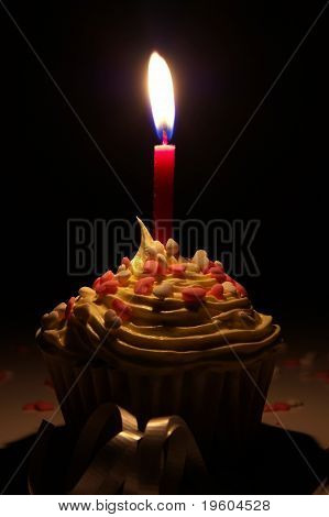 A birthday cupcake with a candle