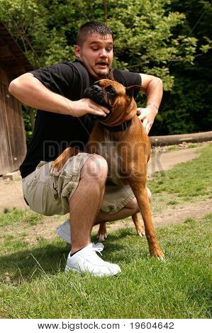 A man being attacked by a boxer dog, slight motion blur in face to show movement in the attack
