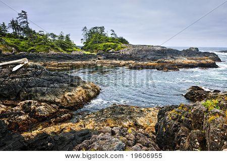Coast Of Pacific Ocean, Vancouver Island, Canada
