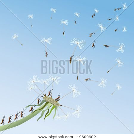 Ants fly away on dandelions in unexplored. Vector.