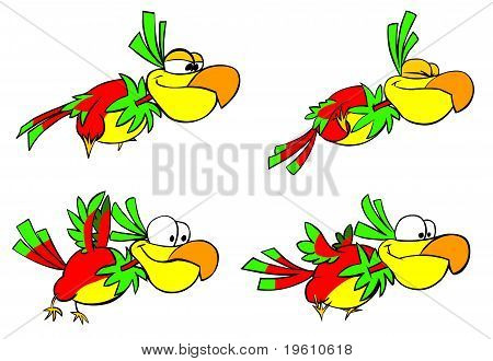 Funny flying parrots.