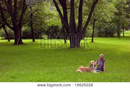 afgano perro y mujer
