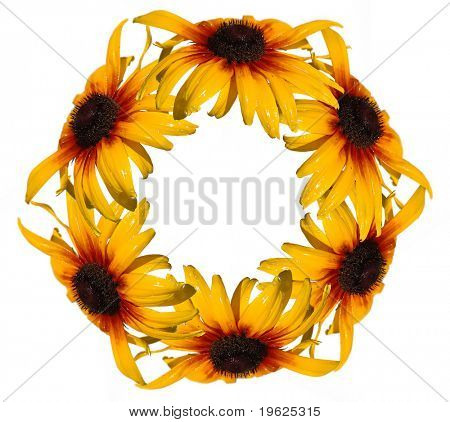 wreath isolated on white