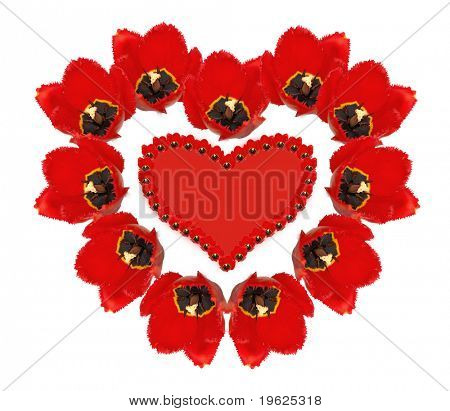 tulips heart